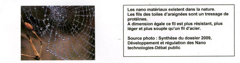 Toile d'araignée001